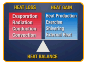 heatloss_gain